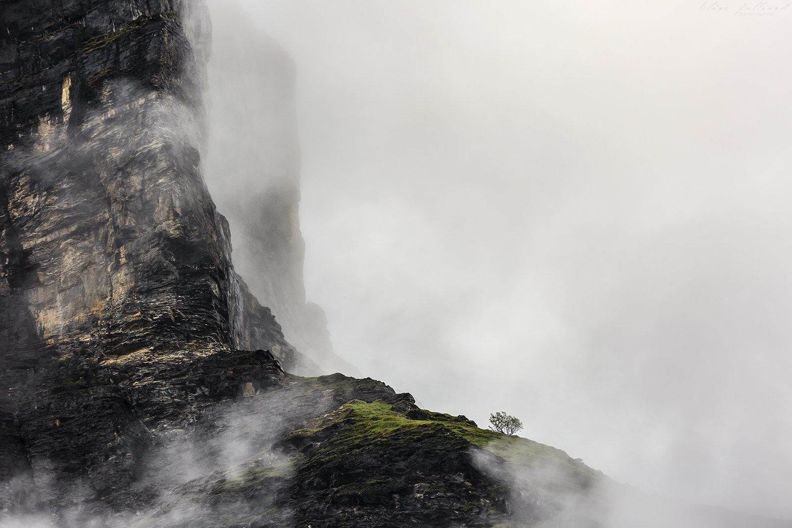 elise-julliard-photographe-rhone-alpes-haute-savoie-sixt-fer-a-cheval-brume